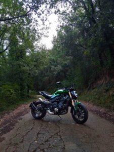 Camino Rural asfaltado - Rupit
